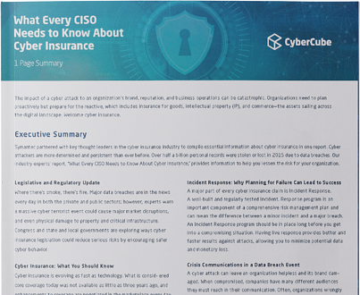 What CISOs Report cover - landing pages (no border)-1